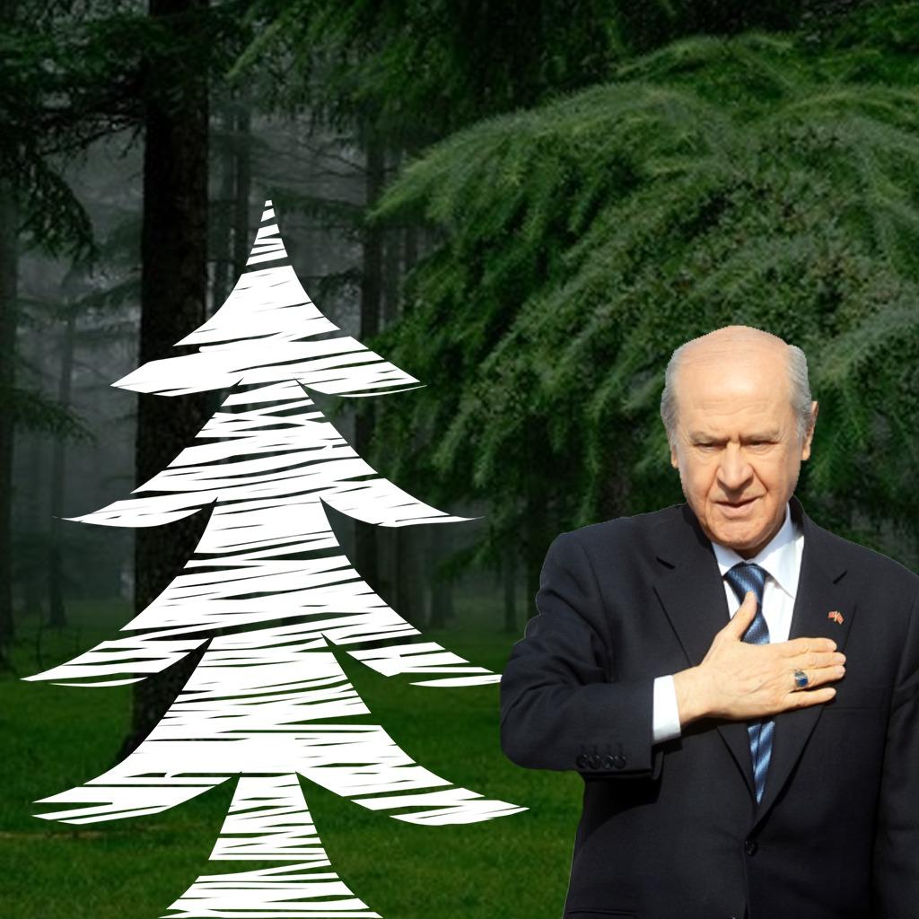 """Düziçi'nde """"Devlet Bahçeli Hatıra Ormanı"""" Oluşturuluyor"""